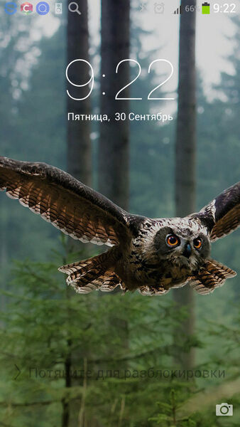 Фото мужчины Димон, Москва, Россия, 21