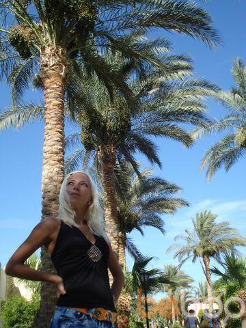 Фото девушки киска, Владимир, Россия, 30