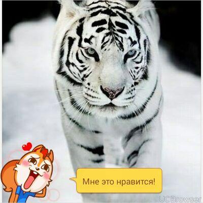 Фото мужчины костя, Воронеж, Россия, 24