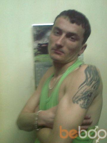���� ������� Pestrui, �����, ��������, 31