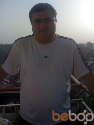 ���� ������� Davit, ������, ������, 28