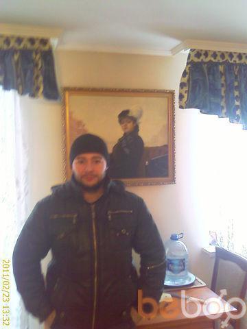 ���� ������� Velimir, �������, �������, 36
