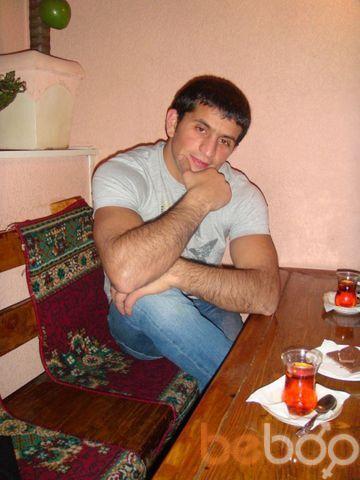 ���� ������� qaqulya, �����-���������, ������, 33