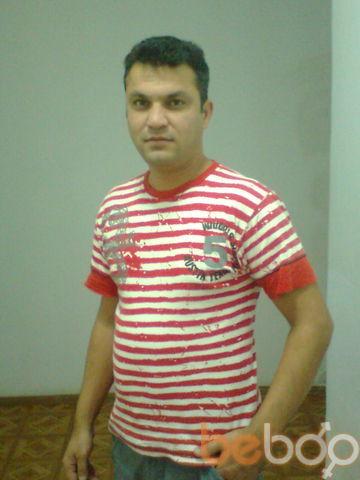 ���� ������� shohib, �������, �������, 39