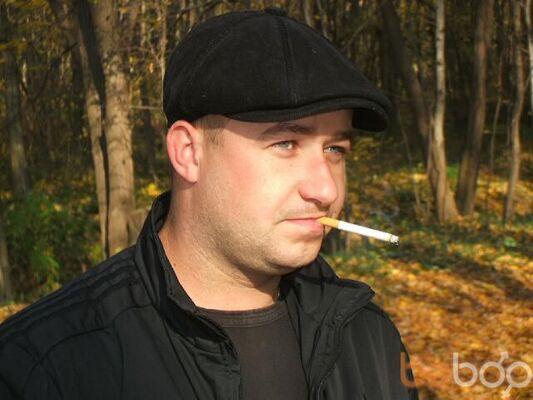 ���� ������� tsunga, �������, �������, 36